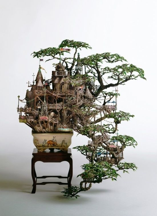 casa-arbol-bonsai