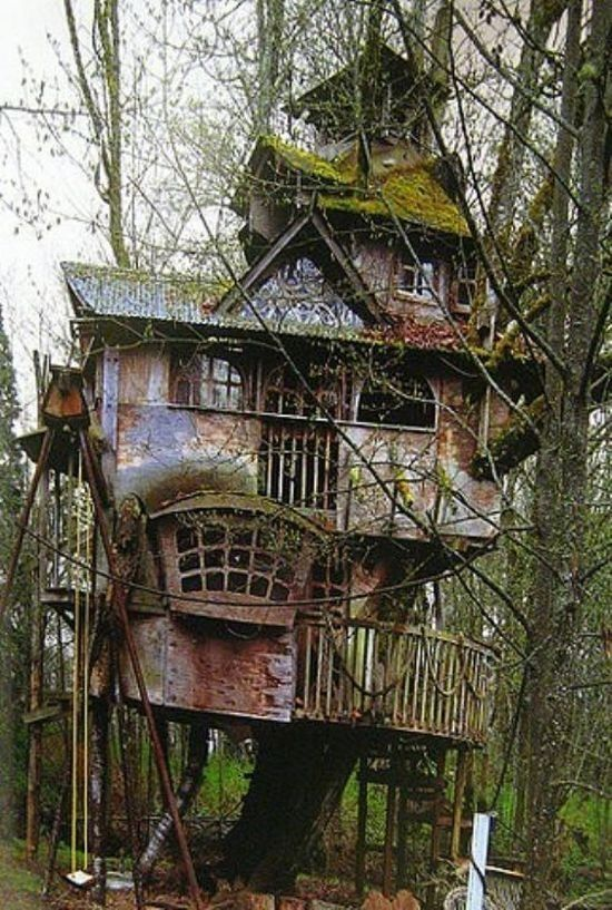 tree-house-fantasia